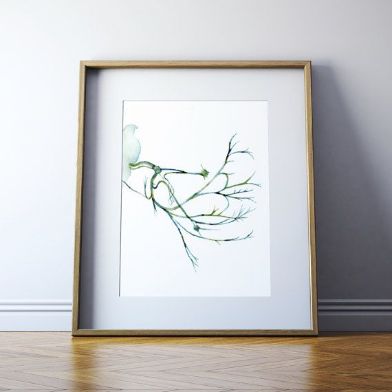 Facial Nerve Watercolor Art Print  Cranial Nerve Painting