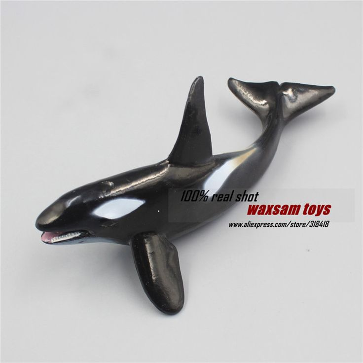 Hot toys Killer whale Simulation model Marine Animals Sea Animal kids gift educational props (Orcinus orca ) Action Figures #Affiliate