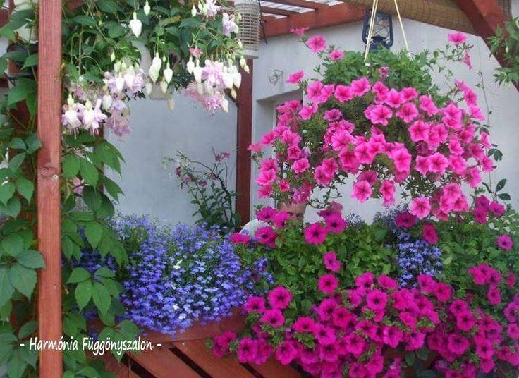 82 csodálatos balkon, virágláda, kaspó inspiráció - MindenegybenBlog