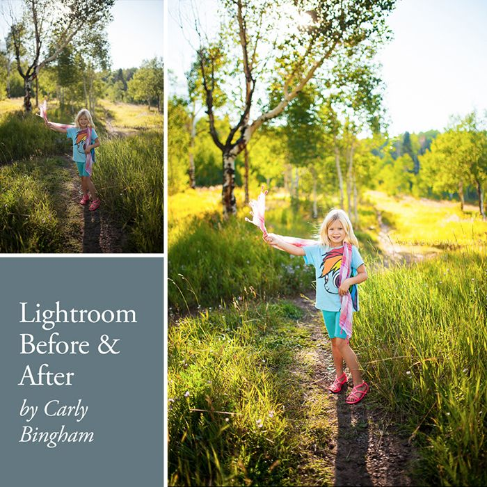 Ninety-nine percent of my workflow is done in Lightroom, so I'll show you how I edit a photo, step by step in Lightroom (5.6).