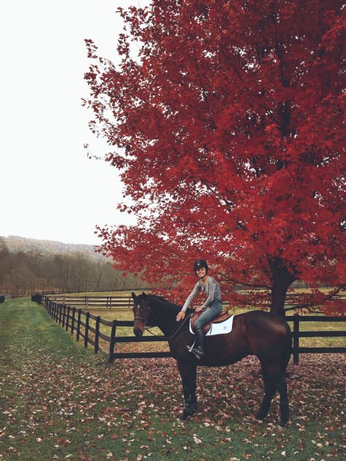 morganecarroll:  Fall days with my favorite pon
