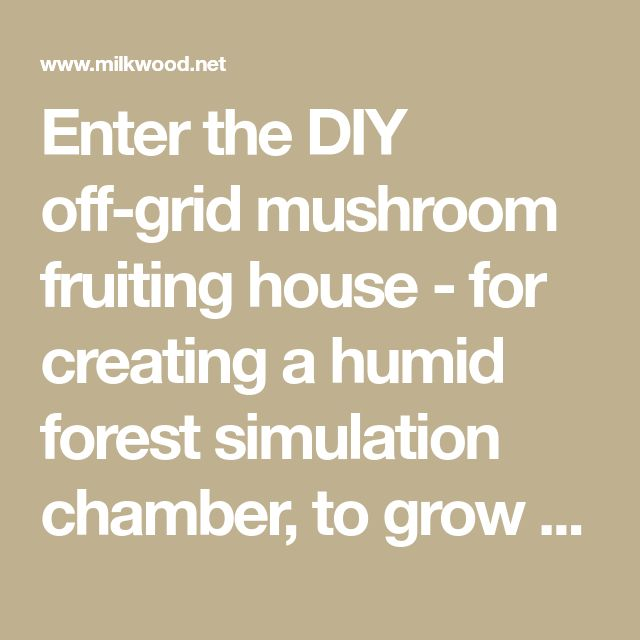Enter The DIY Off Grid Mushroom Fruiting House   For Creating A Humid  Forest Simulation