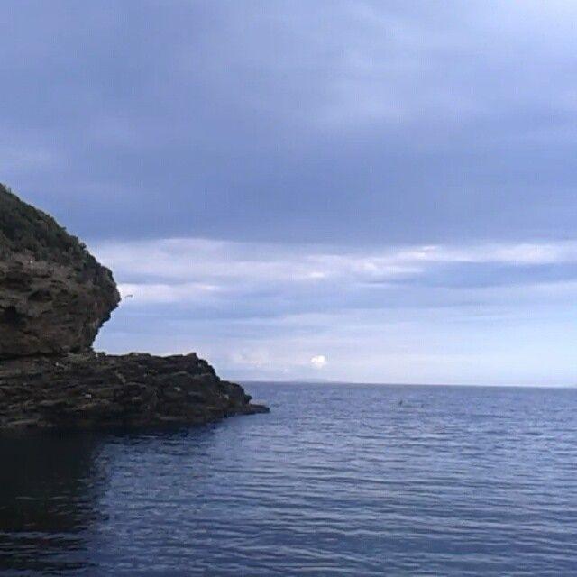 #ShareIG Di fronte al #paradiso #Ortano #RioMarina #isoladelba #Elbadellemeraviglie #sea #Beach #insel #Elbalovers #ILoveElba #Ilikeitaly #tuscany #turistipercaso #tuscanygram -