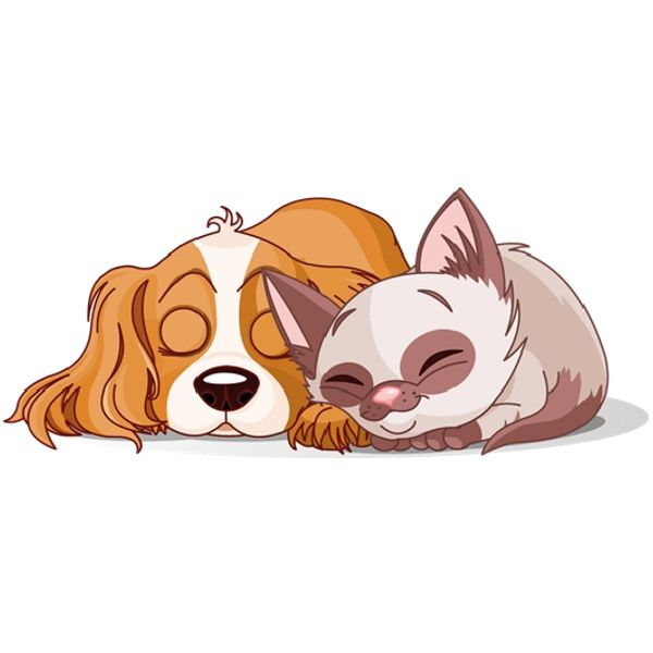 dog & cat clipart | Cartoon Cat And Dog Clip Art Pictures ...