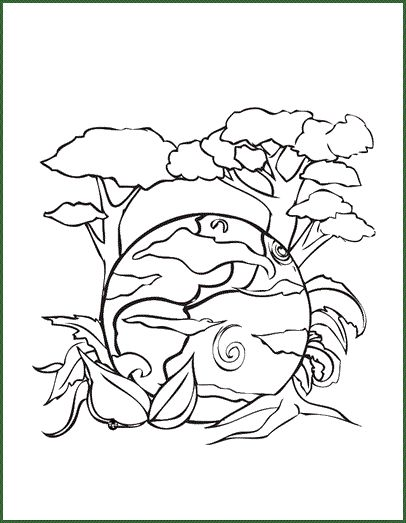 Science Coloring Book : 40 best occupation images on pinterest