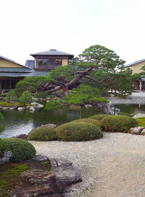 taille japonaise niwaki hortitherapie frederique dumas meditation formation stage creation zen jardins japonais chambres d'hotes jardin shizen no sei tsuboniwa
