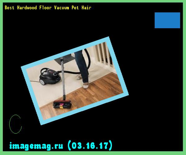 Best Hardwood Floor Vacuum Pet Hair   The Best Image Search