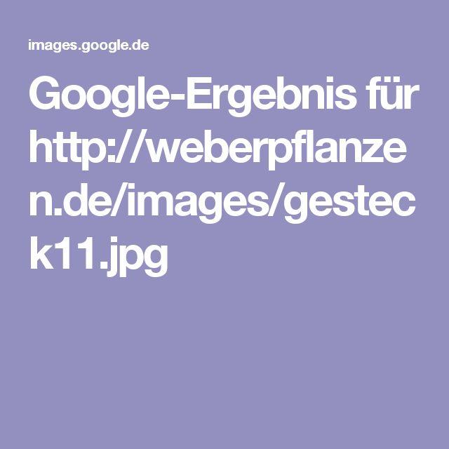 Google-Ergebnis für http://weberpflanzen.de/images/gesteck11.jpg
