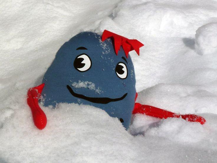 Pelle im Schnee  https://www.facebook.com/profile.php?id=100006811905118