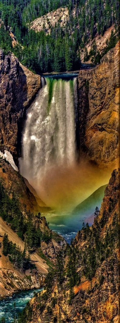Use TripHobo to plan your trip to the Yellowstone National Park.