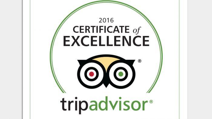http://aeolosskopelos.com/ Οι ταξιδιώτες αποφάσισαν: Πιστοποιητικό Διάκρισης 2016 για το Aeolos Hotel | TripAdvisor Insights