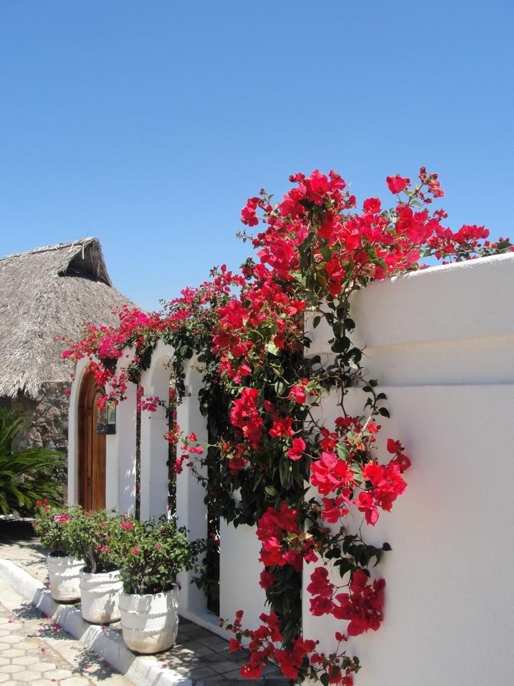 Properties That Sleep 20 Guests Or More Beautiful
