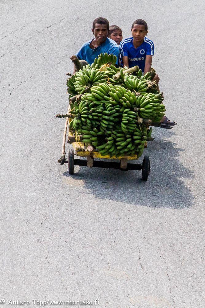 Banana transport by Antero Topp