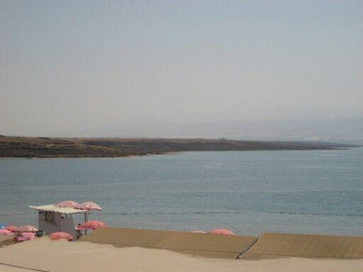 Мертвое море 2013