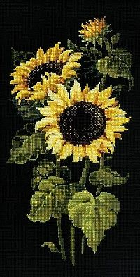 Sunflowers on Black Cross Stitch Kit R1056