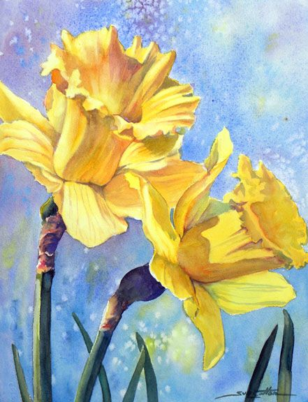 Daffodils Springing web.jpg (441×576) by Sue Lynn Cotton