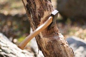 Cei doi tăietori de lemne
