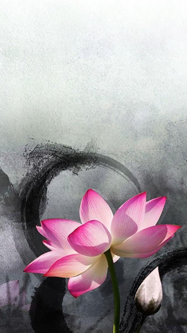 Ink Lotus iphone 5 HD wallpaper | iphone wallpaper | Lotus ...