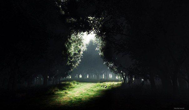 Если ты оказался в темноте и видишь хотя бы самый слабый луч света, ты должен идти к нему, вместо того, чтобы рассуждать, имеет смысл это делать или нет. Может, это действительно не имеет смысла. Но просто сидеть в темноте не имеет смысла в любом случае. Понимаешь, в чем разница