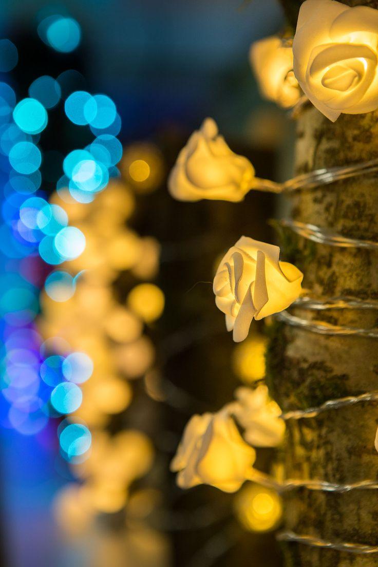 Christmas Displays 2015 at Hayes Garden World