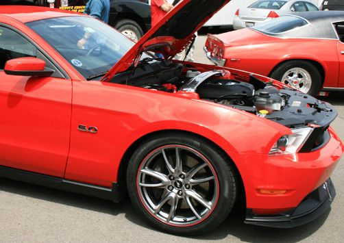 """""""Heading into their second Hot Rod Power Tour, my Wheel Bands are in great shape. People notice them and I am happy to have them installed. They really add to the look of the Mustang GT, plus they are functional!"""""""