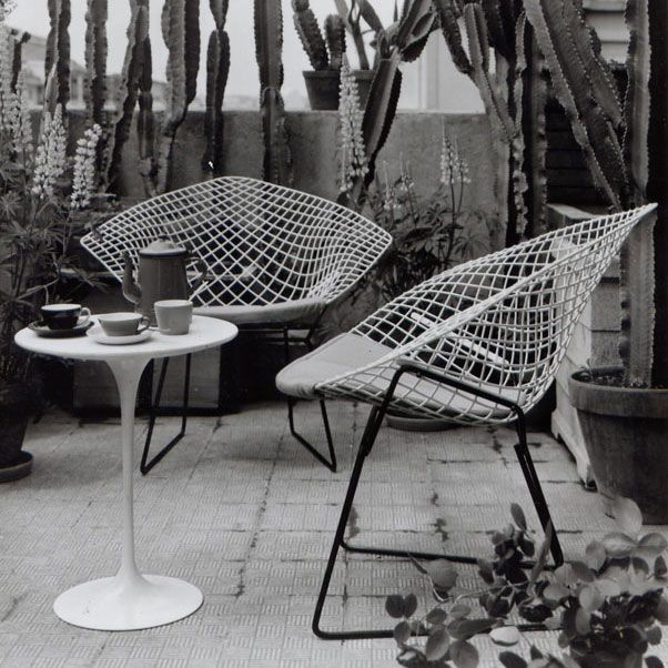 Diamond Chair, Harry Bertoia Pour Knoll, 1952