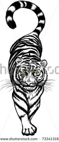 black and white Crouching Tiger