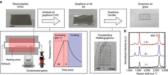 Single Step Ambient Air Synthesis Of Graphene From Renewable