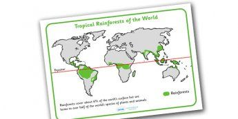 Tropical Rainforests World Map - tropical rainforest, rainforests, world…