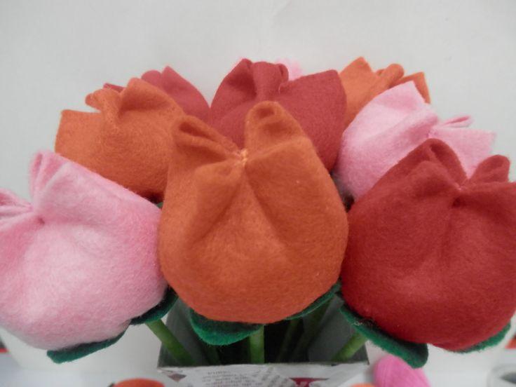 Tulipa - Tutorial
