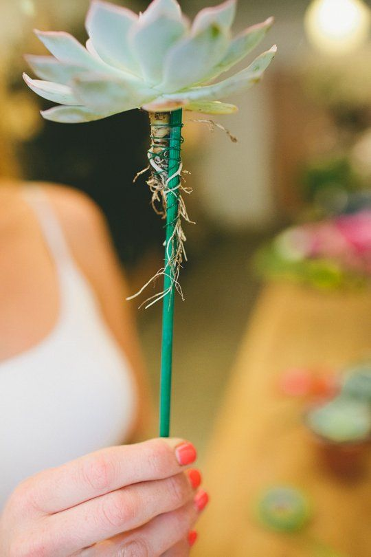 Wedding Tips from the Pros: How to Add Succulents to any Spring Bouquet