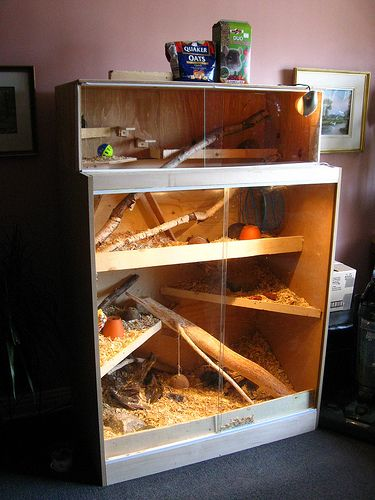 DIY cage for Degus . . .I would love to duplicate this!
