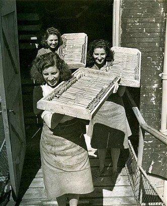 arbeidsters pijpenfabriek gouda.