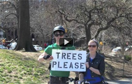 Want to help an organization win $10,000 towards tree planting?  Click here! #trees #volunteer #parks