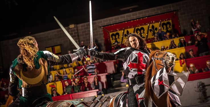 Try something unique for dinner theater in Chcago - Medieval Times! It's medieval Spain: pure-bred horses, knights in combat, falconry, swordplay,  jousting.