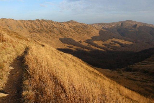 Ścieżka prowadząca na Bukowe Berdo