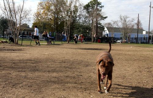 Wisner Dog Run opens, signalling new day for dog parks in New Orleans » Uptown Messenger