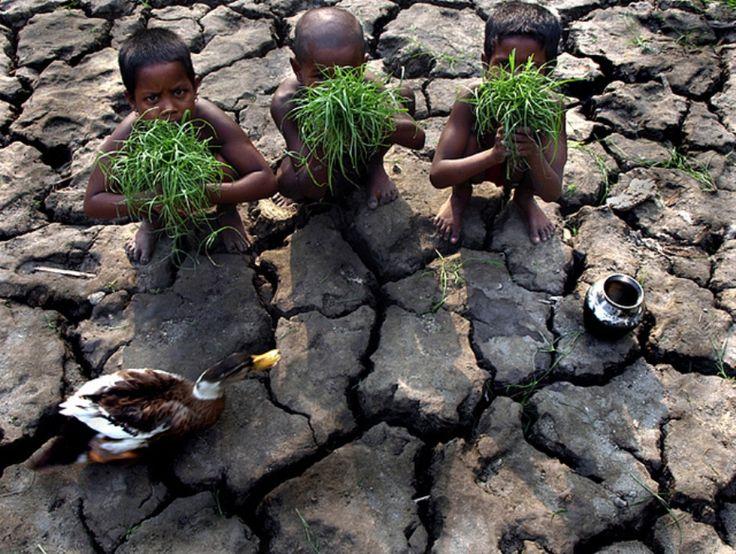 Erosion de los suelos - La plata