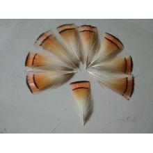 Перья фазана 4-6 см. 20 шт.