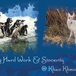 Celebrating Hard Work & Sincerity @ Khao Kheow Open Zoo!!