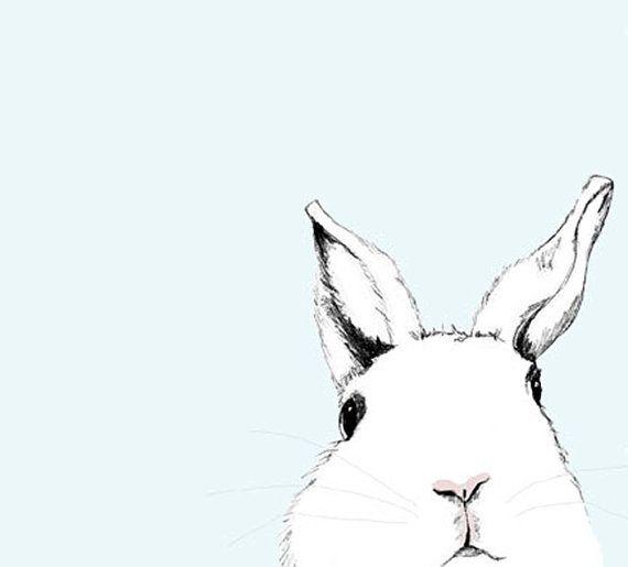 White Rabbit print from Etsy shop: corelladesign  Donna McKenzie Art & Illustration