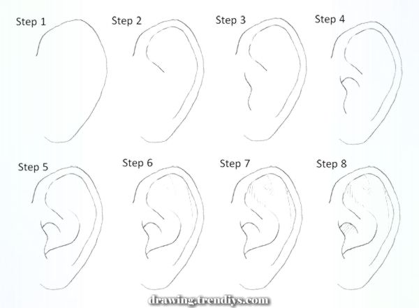 The Best Drawing Manga Ears Step By Step Improbable Drawing Manga Ears Step By Drawing Manga In 2020 Drawing Tips Drawing Tutorial Drawings
