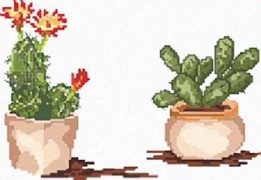 Punto croce piante grasse 1