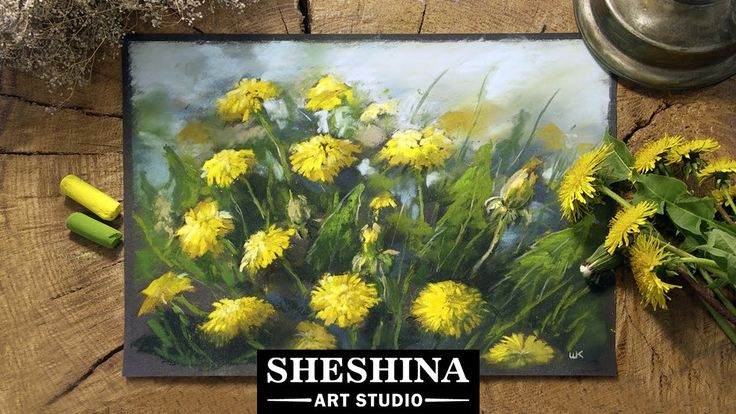 How to draw dandelions with soft pastels  Sheshina Ekaterina