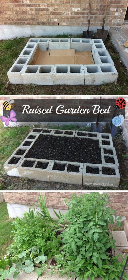 Raised bed with concrete cinder blocks. Kill grass with layer of cardboard. Good way to grow mint perhaps.