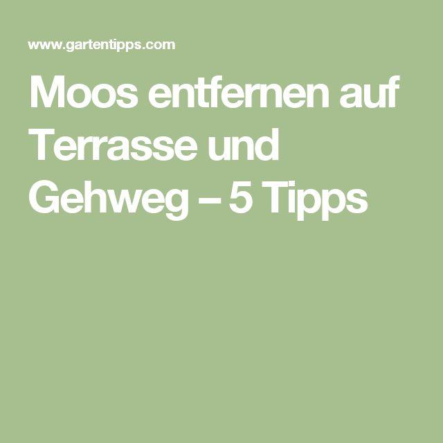 Moos entfernen auf Terrasse und Gehweg – 5 Tipps