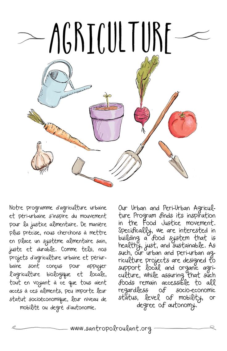 Urban and peri-urban agriculture illustration for Santropol Roulant.