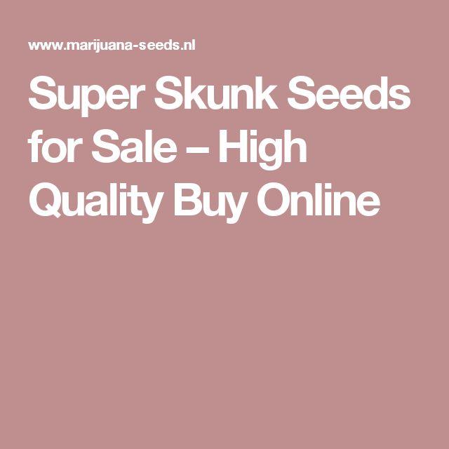 Super Skunk Seeds for Sale – High Quality Buy Online