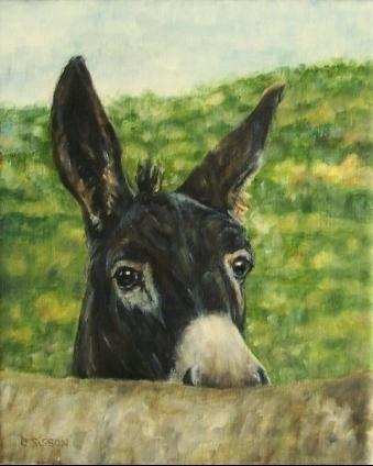 Donkey Horse Original Art Painting By Debra Sisson