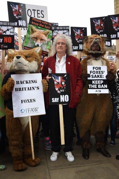 Brian May Photos - Brian May Leads Anti-Fox Hunting Rally - Zimbio